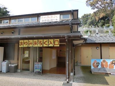 20170403ayumi1.JPG