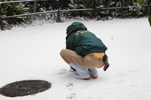 ミライと雪12.jpg