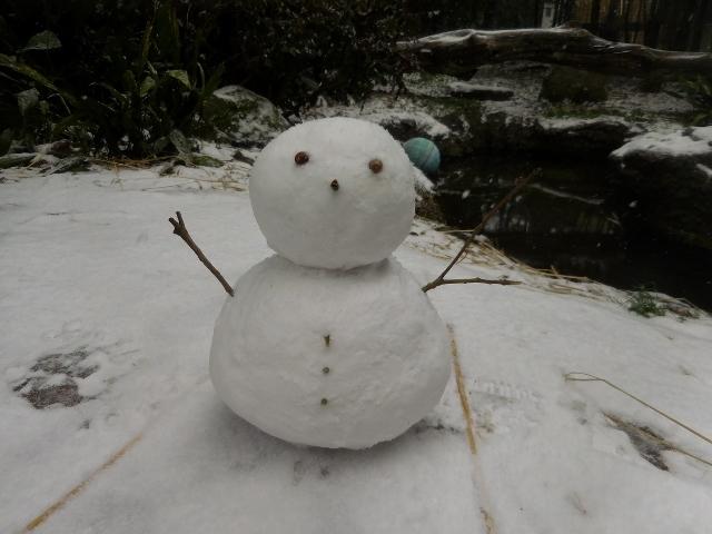 ミライと雪16.jpg