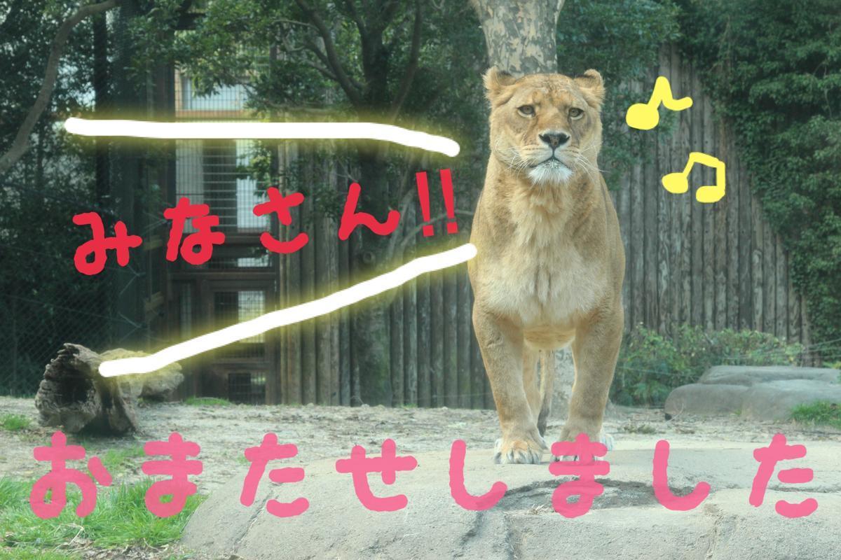 おまたせしました (2).jpg