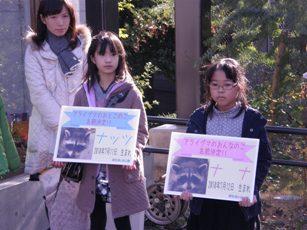 20101222アライグマ⑤.JPG