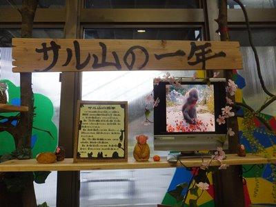 20150305あゆみあるくさる2.JPG
