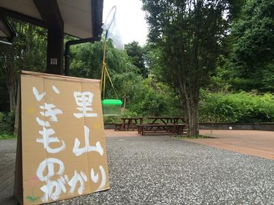 20150712いきもの1.JPG