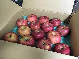 20180525-001リンゴ
