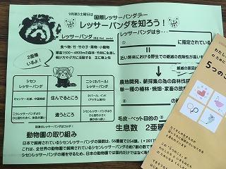 20180920-004レッサー