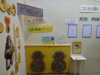 2011.11.15サル展2 (8).JPG