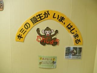 2011.11.15サル展2.JPG
