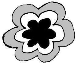 すいづさん花.jpg