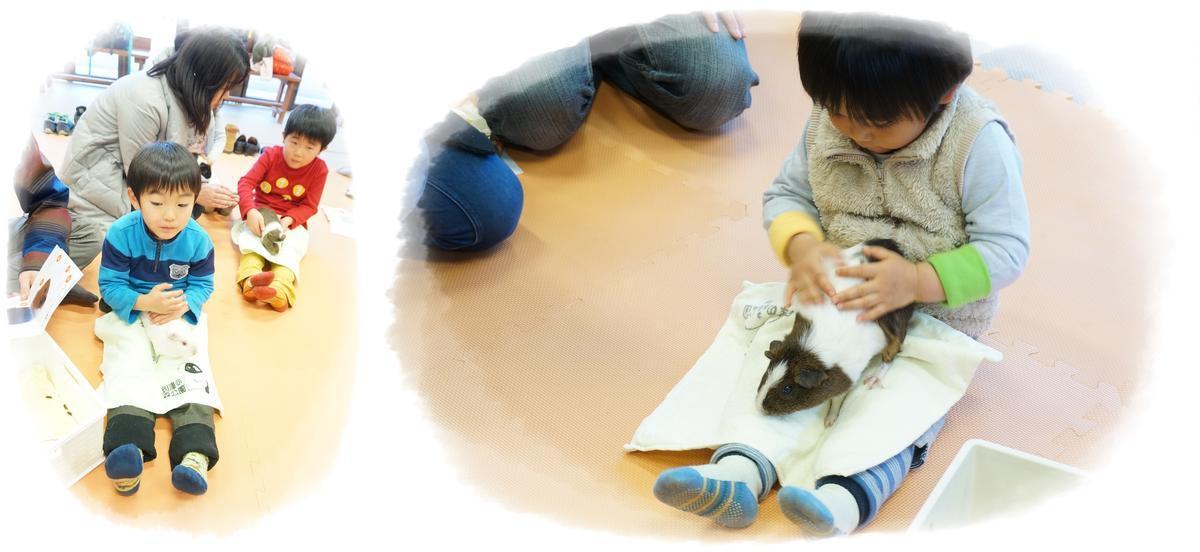 20180127_ウサモル飼育教室_2.jpg