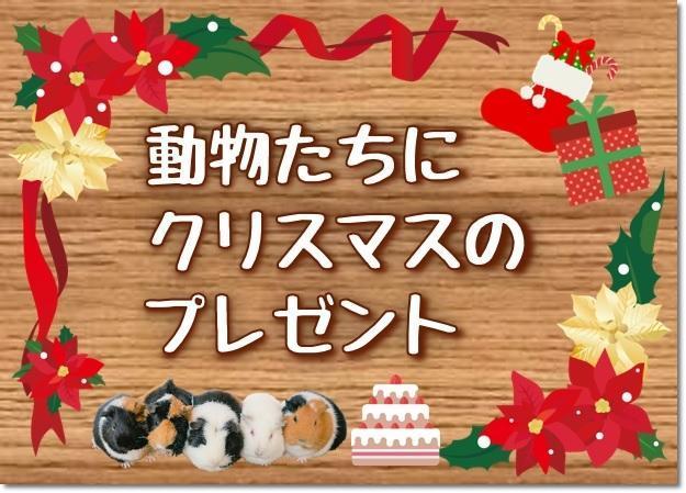 2018_動物たちにクリスマス-6-1影付き.jpg