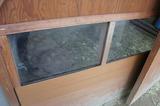 リクガメ窓.jpg