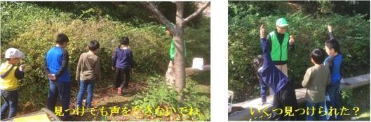 森のおはなし探検隊-3.jpg
