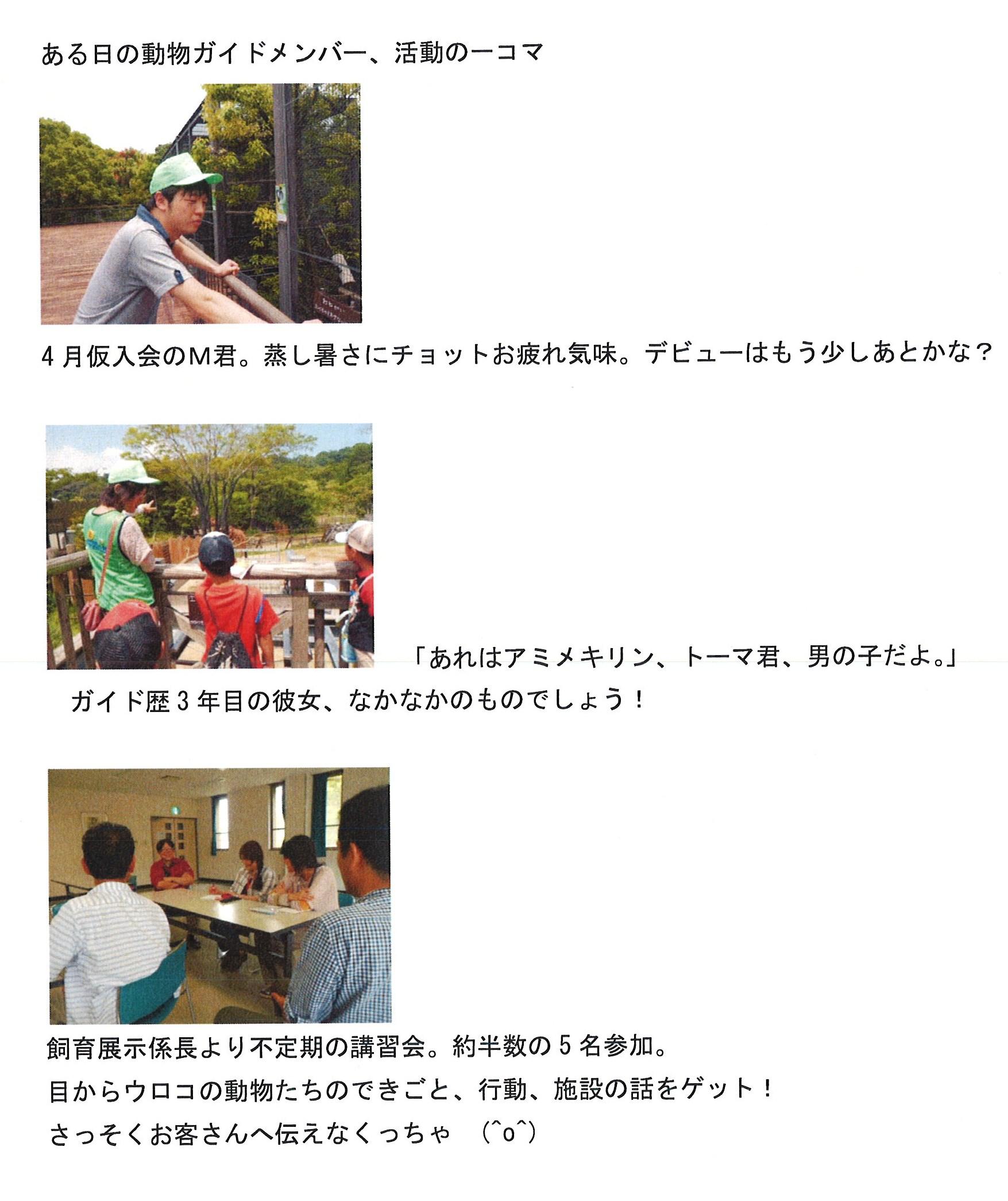 20130701_森の仲間たち.jpg