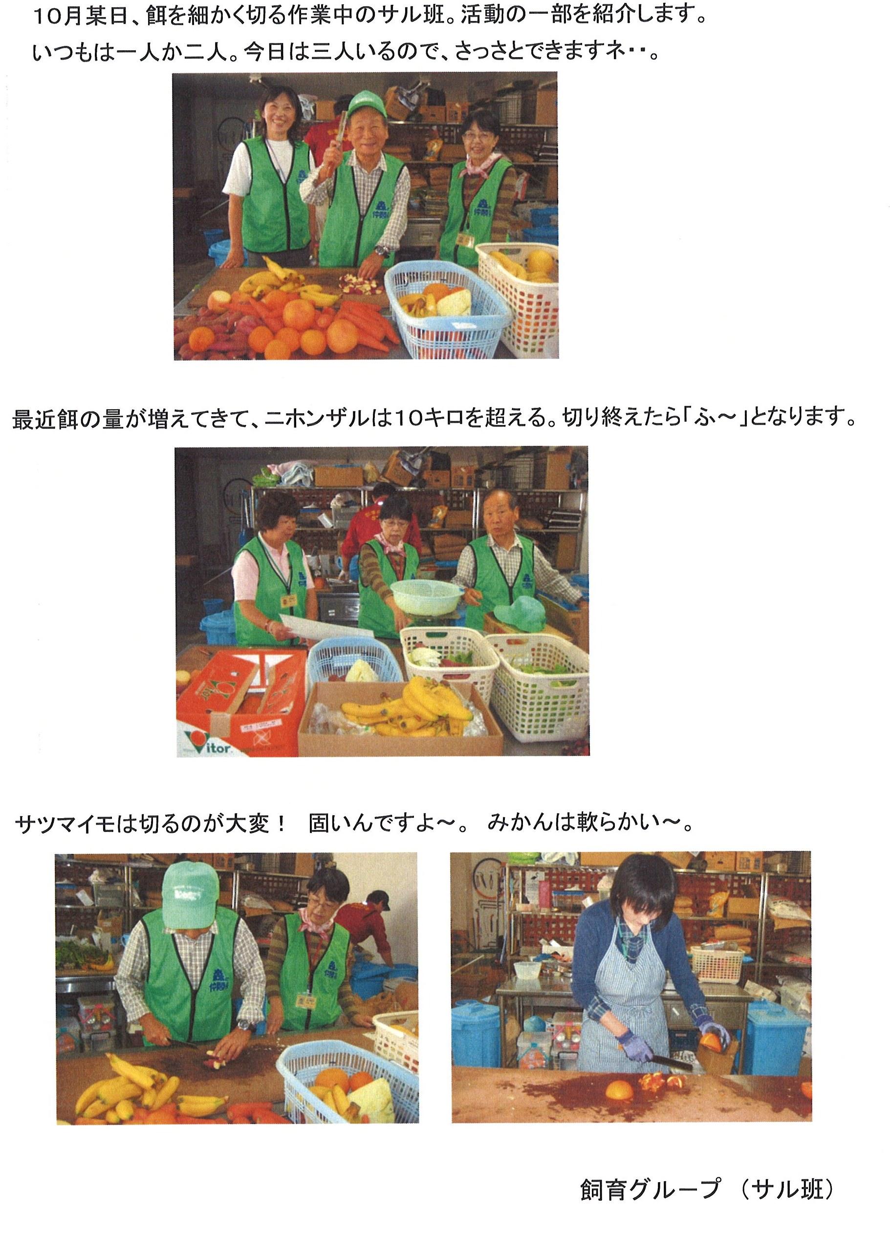20131025_森の仲間たち.jpg