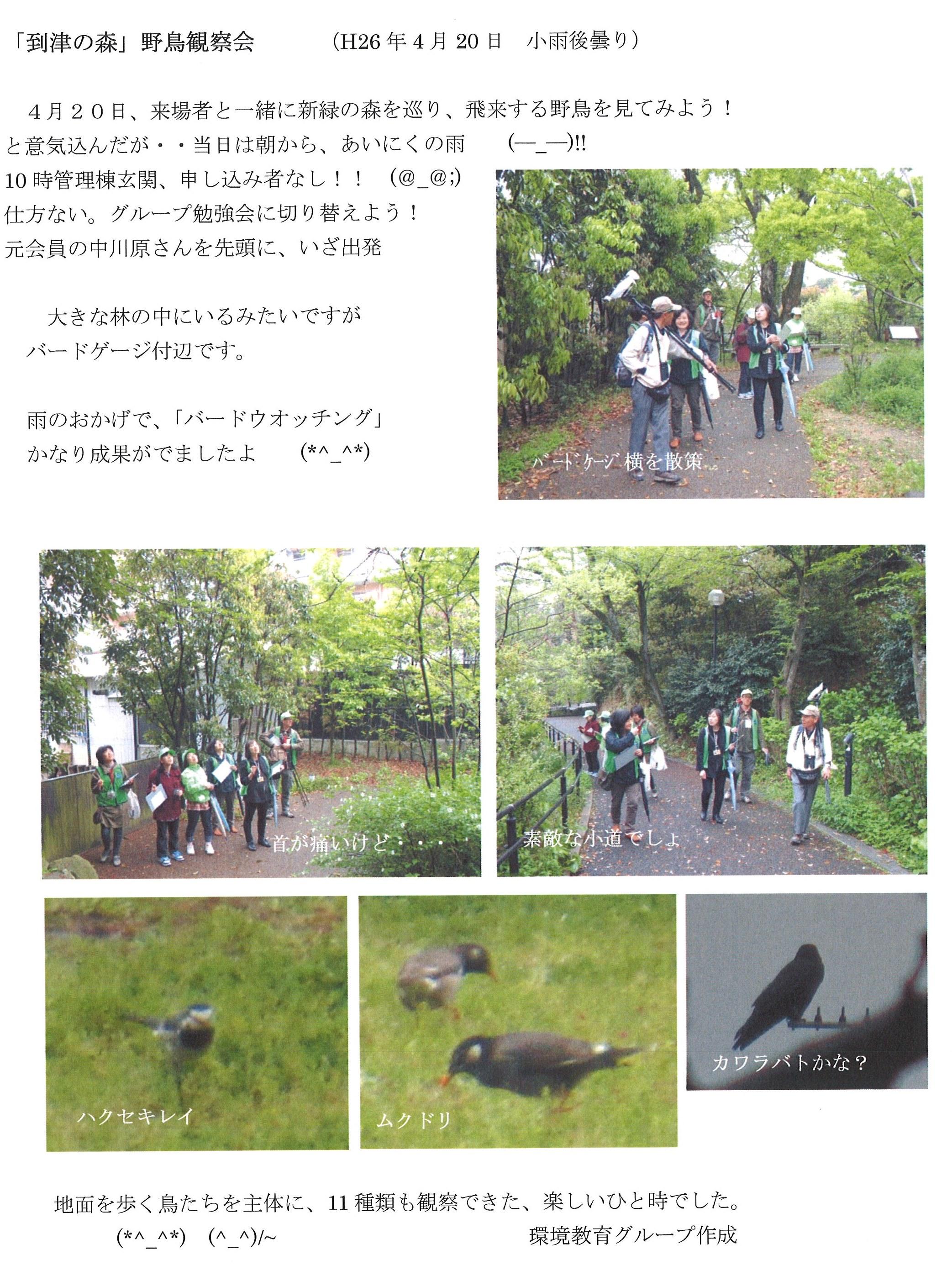 20140426_森の仲間たち.jpg