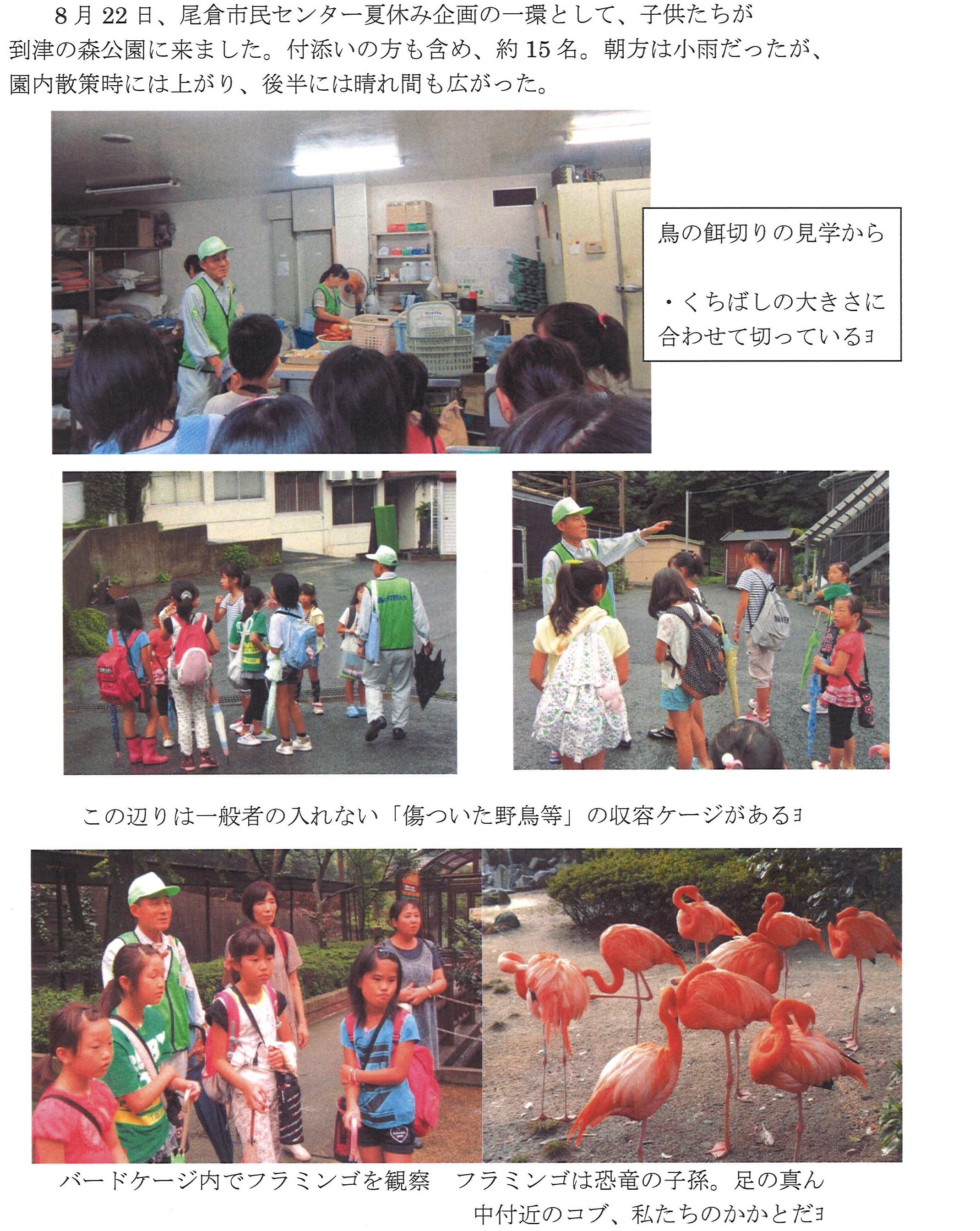 20140910_森の仲間たち_2.jpg