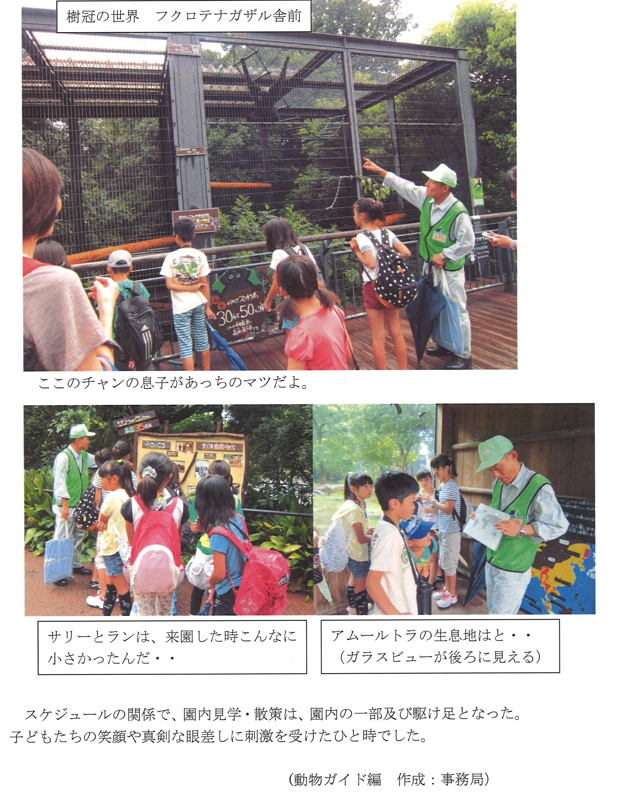 20140910_森の仲間たち_3.jpg