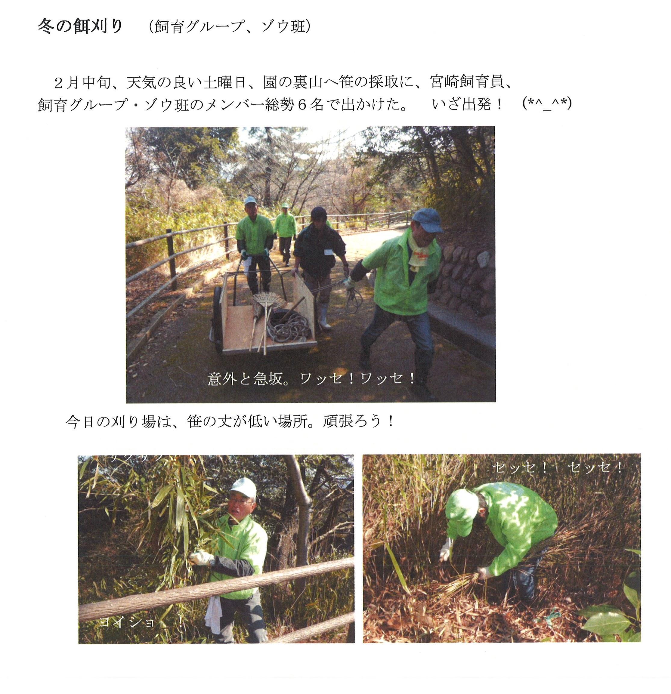 20150219_森のお話探検隊_1.jpg