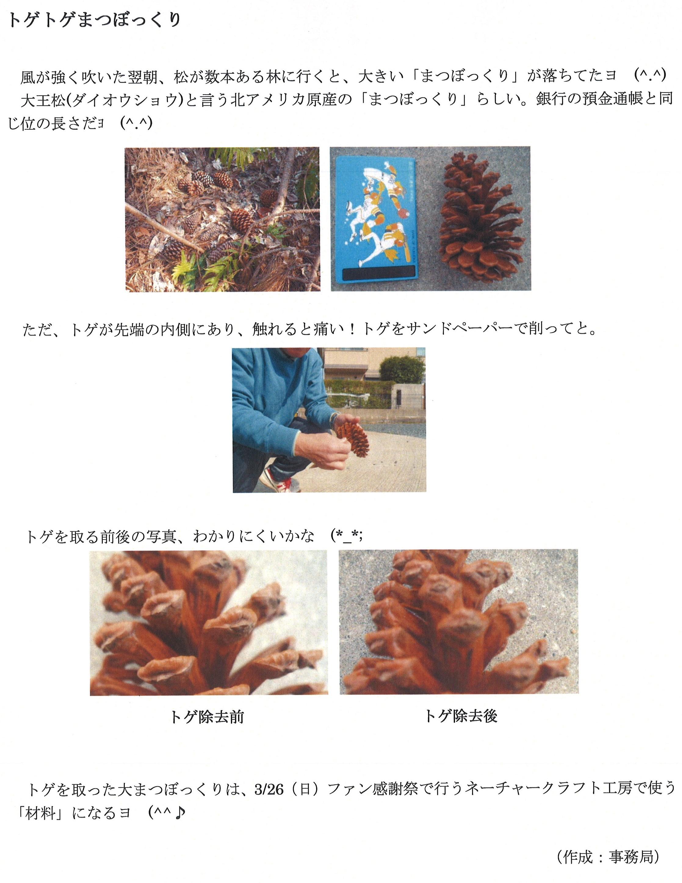 20170320_ボランティア.jpg
