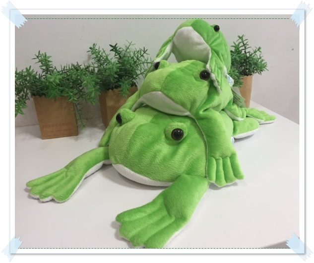 くたくたカエル.JPG